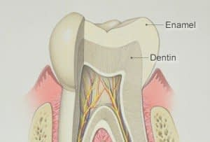 Bradford Family Dentistry Tooth Enamel